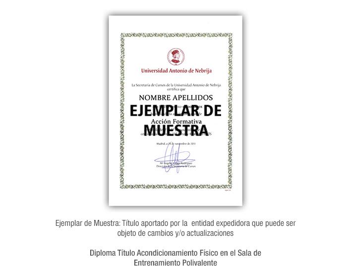 Diploma Título Acondicionamiento Físico en el Sala de Entrenamiento Polivalente formacion universitaria