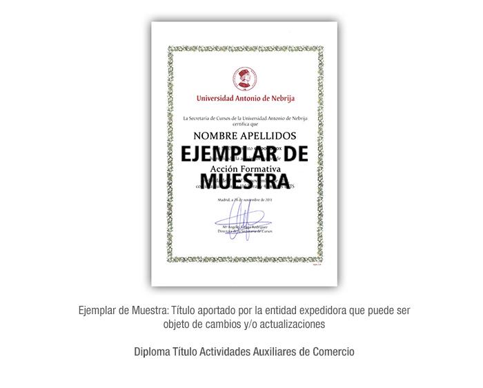 Diploma Título Actividades Auxiliares de Comercio formacion universitaria