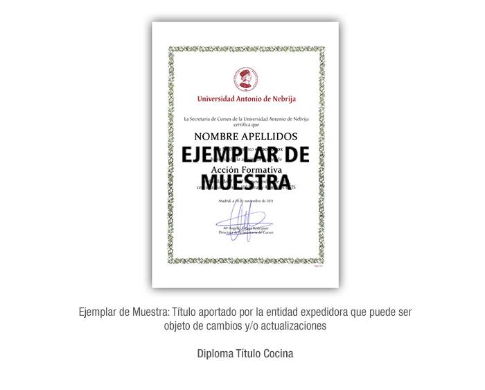 Diploma Título Cocina formacion universitaria