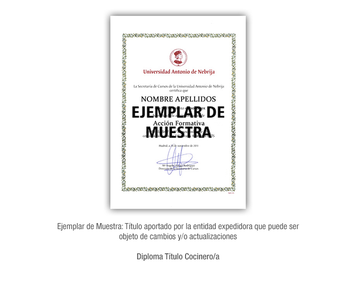 Diploma Título Cocinero/a formacion universitaria