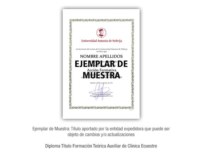 Diploma Título Formación Teórica Auxiliar de Clínica Ecuestre formacion universitaria