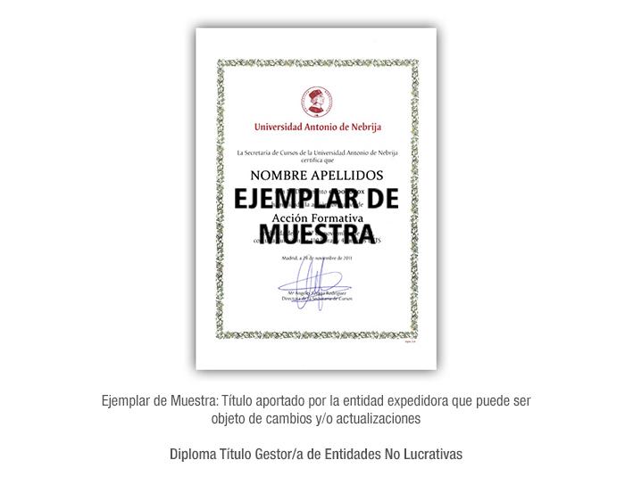 Diploma Título Gestor/a de Entidades No Lucrativas formacion universitaria