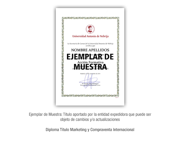 Diploma Título Marketing y Compraventa Internacional formacion universitaria