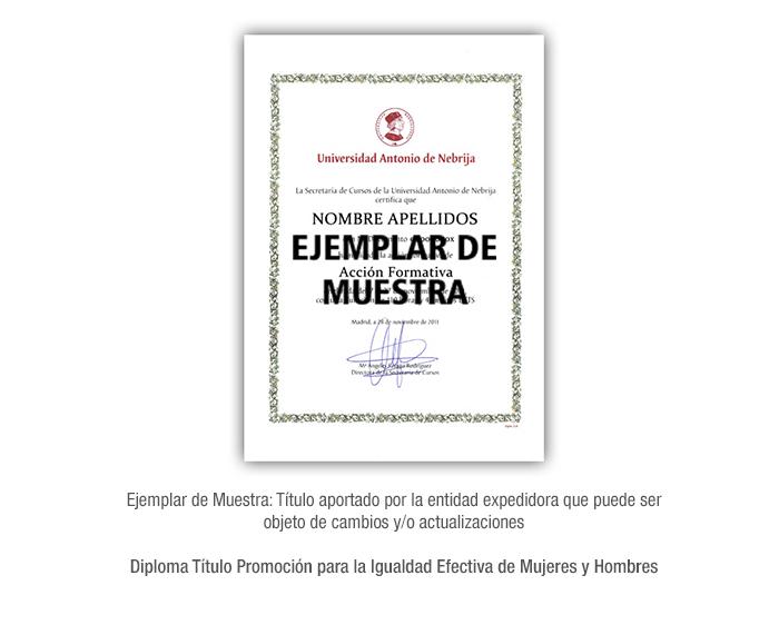 Diploma Título Promoción para la Igualdad Efectiva de Mujeres y Hombres formacion universitaria
