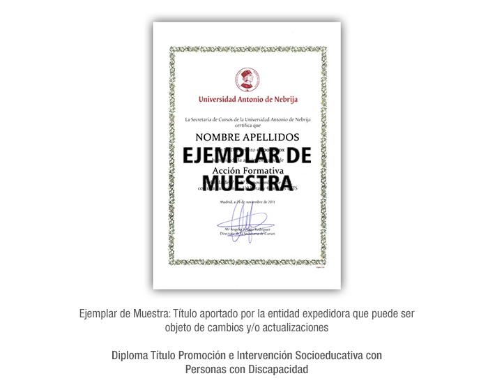 Diploma Título Promoción e Intervención Socioeducativa con Personas con Discapacidad formacion universitaria