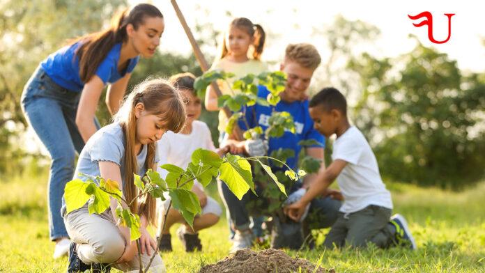 Curso adaptado al Certificado de Profesionalidad Dirección y Coordinación de Actividades de Tiempo Libre Educativo Infantil y Juvenil (SSCB0211) (vías no formales de formación)