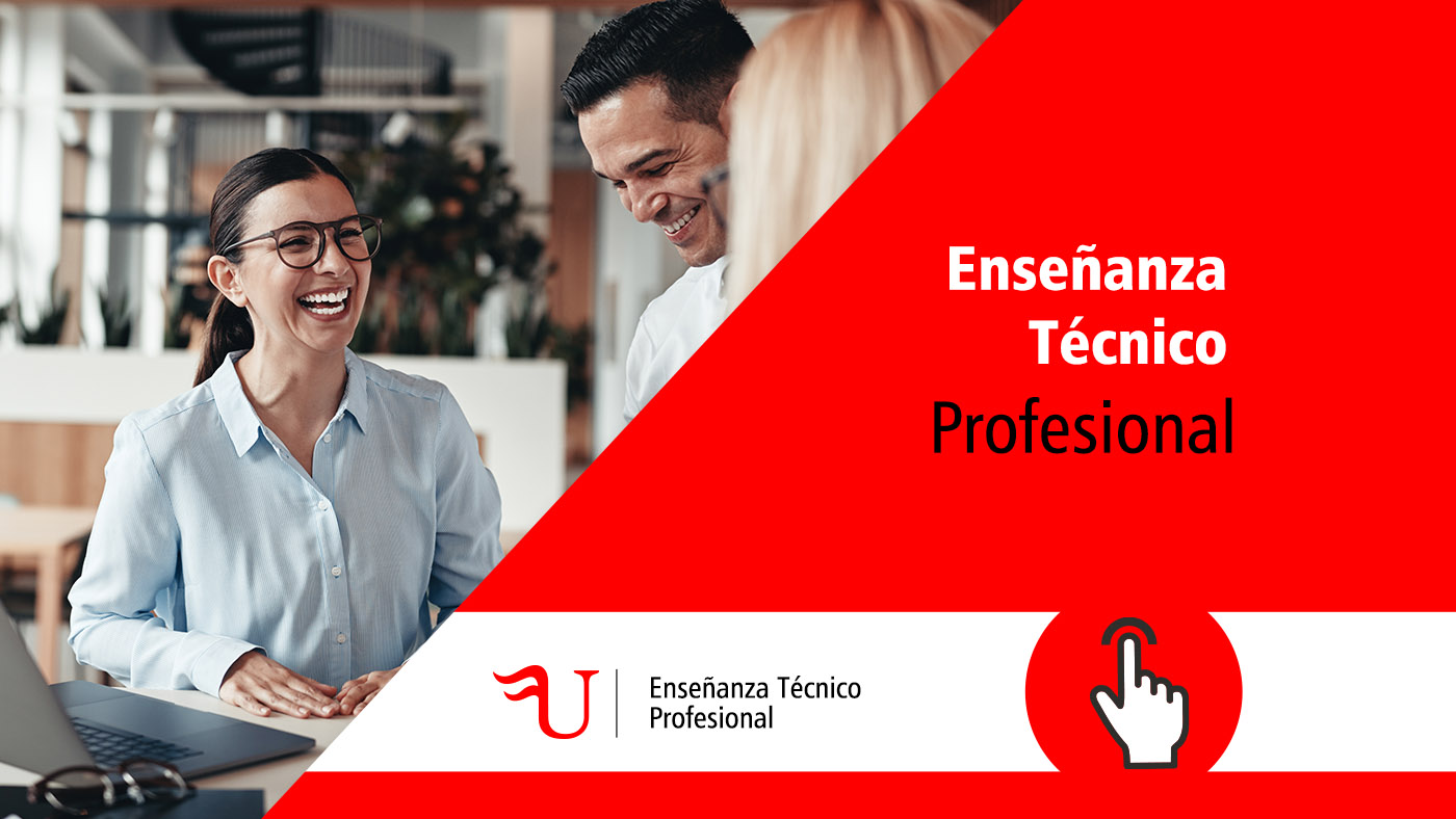 Enseñanza Técnico Profesional Formación Universitaria