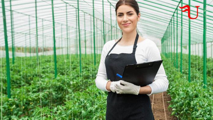 Curso adaptado al Certificado de Profesionalidad Gestión de la Producción Agrícola (AGAU0208) (vías no formales de formación)