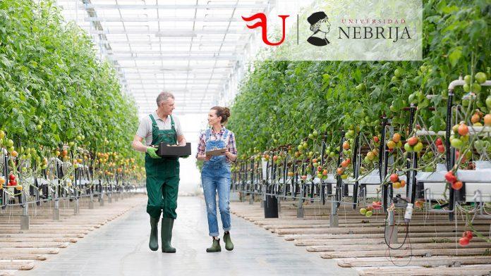 Título Propio de Formación Continua Horticultura y Floricultura