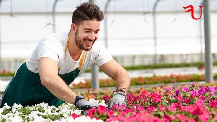 Curso adaptado al Certificado de Profesionalidad Horticultura y Floricultura (AGAH0108) (vías no formales de formación)
