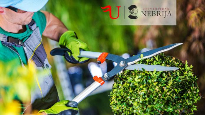 Diploma-Título de Formación Continua Instalación y Mantenimiento de Jardines y Zonas Verdes