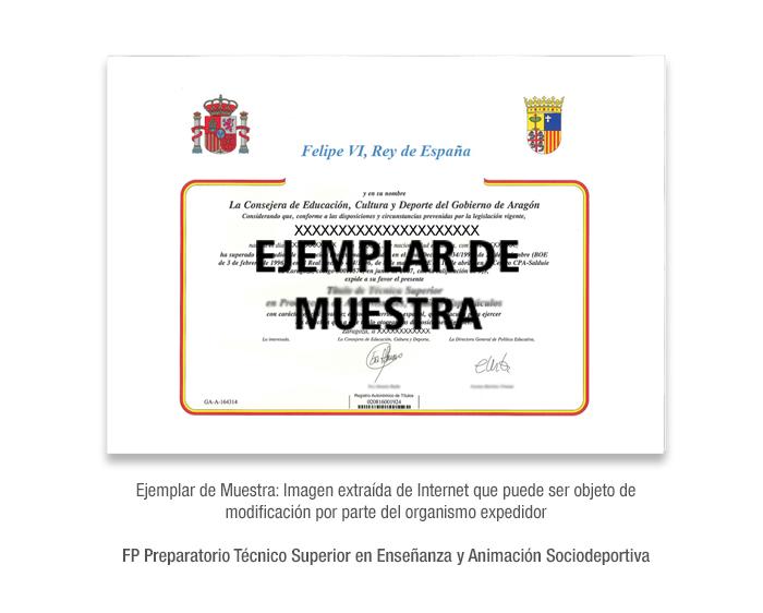 FP Preparatorio Técnico Superior en Enseñanza y Animación Sociodeportiva formacion universitaria