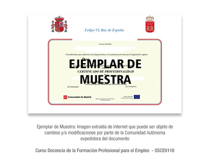 Curso Docencia de la Formación Profesional para el Empleo  - SSCE0110 formacion universitaria