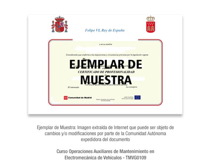 Curso Operaciones Auxiliares de Mantenimiento en Electromecánica de Vehículos - TMVG0109 formacion universitaria