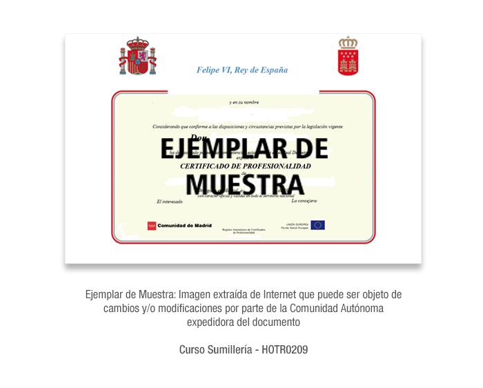 Curso Sumillería - HOTR0209 formacion universitaria
