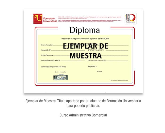Curso Administrativo Comercial formacion universitaria