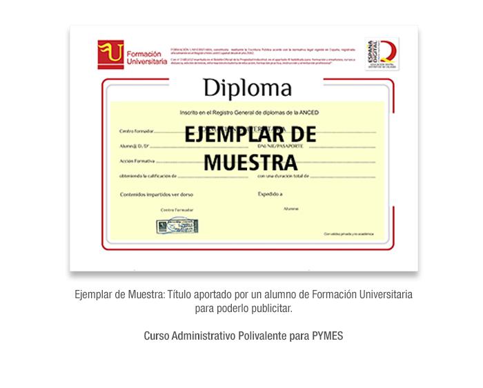 Curso Administrativo Polivalente para PYMES formacion universitaria