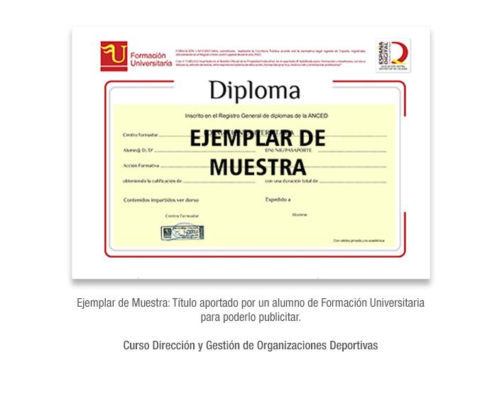 Curso Dirección y Gestión de Organizaciones Deportivas formacion universitaria