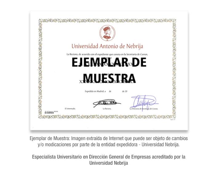 Especialista Universitario en Dirección General de Empresas acreditado por la Universidad Nebrija formacion universitaria