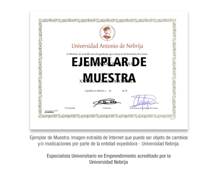 Especialista Universitario en Emprendimiento acreditado por la Universidad Nebrija formacion universitaria