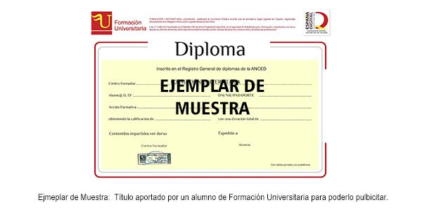 Diploma de Enseñanza Técnico Profesional de Administrador de Servidores y Páginas web